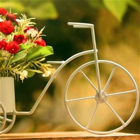 Miniature Bicycle Spring Flowers Facebook Cover - Nature